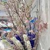 【宝塚/ハイキング】新名神高速開通!宝塚北サービスエリアへ徒歩で行ってきました。JR武田尾駅から所要時間40分。