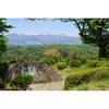 二本松市・霞ヶ城公園で藤棚を見てきた