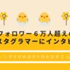 【フォロワー6万人超え!】暮らしインスタグラマーpyokopyokop(ぴょこぴょこぴ)さんにインタビュー!