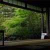 X-H1で京都撮影