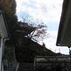 普明閣への階段