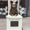 三越の猫像