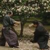 映画『散り椿』60点/無音というBGM/ネタバレ感想と評価