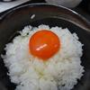 秋のオレンジ色の誘惑。最高級赤たまご『富士の名月』に、極早生 由良みかん、太秋柿♪