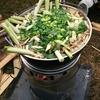 芋煮オフ会に参加してきました。