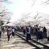 春の京都へ インクライン〜南禅寺〜永観堂〜哲学の道