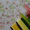 完成?】三菱色鉛筆No.888で桜を塗ってみました☆花日和花だより