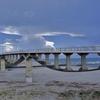 潮騒橋、見上げると空を泳ぐクジラのようだった(なんてねw)
