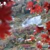 晩秋のスカイラインが見たくて…小蓮華山