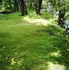 京都・金地院の小堀遠州「鶴亀の庭園」と「八窓席」その3