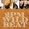 【初回限定盤BD予約】2PM ワイルドビート~240時間完全密着オーストラリア疾風怒濤のバイト旅行〜はこちら