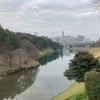 半年ぶりの皇居ラン。半蔵門からの三景。