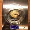 オオクワガタ幼虫飼育-一部幼虫の菌糸ビン交換