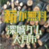 深城ダムでは無料でダムに流れ込んだ流木を無料配布しています 山梨県大月市