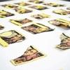 裁断された1万円札674片発見…ごみ処理施設
