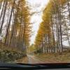 秋と冬の境い目。乗鞍高原の初雪