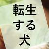 映画『僕のワンダフル・ジャーニー』の感想(ネタバレあり)
