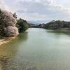 熊添池(福岡県福岡)