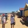 オーストラリアでの真夏のクリスマスの過ごし方!