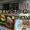 ハンバーガーショップBINGO で巨大ビンゴバーガー食べてみた! | 南房総 道の駅「鄙の里」