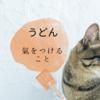 【香川県のうどん屋さん】は終了時間が早い