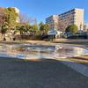 天沼弁天池公園(千葉県船橋)