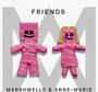 洋楽の歌詞 (Lyrics)で英会話 ♪ Marshmello & Anne-Marie - FRIENDS ♪