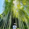 鎌倉でおすすめコースは人混みを避けて、えびす屋の人力車で避暑地巡り。