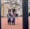 【ロンドン生活・観光】1日でまわれるロンドン観光スポット①