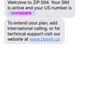 DCL旅行に最適な通信方法を考えてた結果ZIP SIMを選んだ話