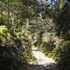 【登山】大麻山~近所低山登山の4つメリット~