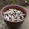 今回は禁煙できるかな~? 感覚の問題