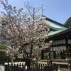 崇徳院・せをはやみ・京都 白峯神宮、そして堀川桜まつり