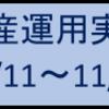 資産運用実績(11/11~11/15)