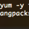 LinuxのSQL*Plusでbashのhistory機能を使う(カーソル↑↓で履歴を呼び出す)