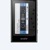 SONY NW-A100シリーズ はやっぱり F800 F880シリーズ っぽい感 〔Android OS USB type-C端子採用〕