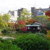 神戸にある広大な日本庭園・相楽園の紅葉