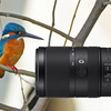 マップレンタルで超望遠レンズを借りてみました。今なら入会登録料無料ですってよ!