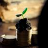 資産運用 10月は支出を見直すチャンス?
