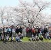 2018.03.31 桜の三川合流ウオーク