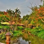 「パーイ ホットスプリングス スパ リゾート(Pai Hotsprings Spa Resort) 」~パーイ郊外の温泉リゾートホテルに滞在!!Vol.1