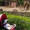 動物園には図鑑を持っていけ!