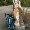 2017.5.27BRM527 神戸300km 山と渓谷レポート(日記)