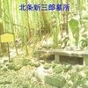 【狂犬通信 Vol.112】北条新三郎氏信の墓