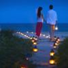 夜のライトアップビーチが美しすぎる #360pics
