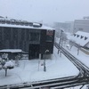 災害級の豪雪…