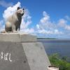 ちょっと道草 210209  写真で Go to 西表島 (1 イリオモテヤマネコ  カンムリワシ  小野田寛郎少尉
