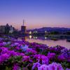 星景サルベージその38 花咲く夕月