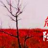 楽山の妄想曲解(2)