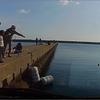 波切港の堤防で泳がせ釣りアジ、エギ、アオリイカ、巨大魚 三重県